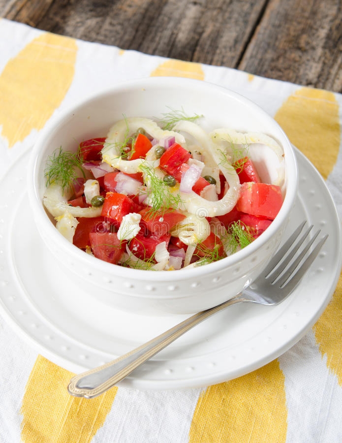 Tomaten-Fenchel-Salat lizenzfreie stockfotografie