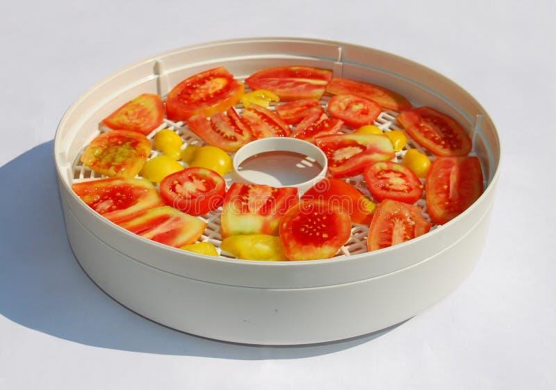 Tomaten im Trockner in Sun stockfotografie