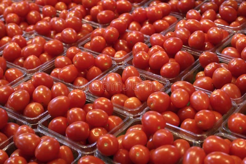 Tomaten am Markt lizenzfreies stockbild