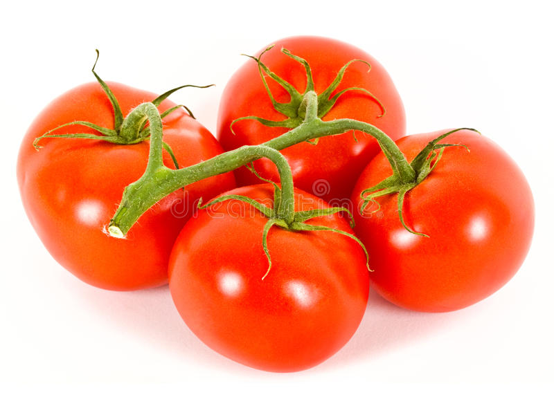 Tomaten over wit. stock foto