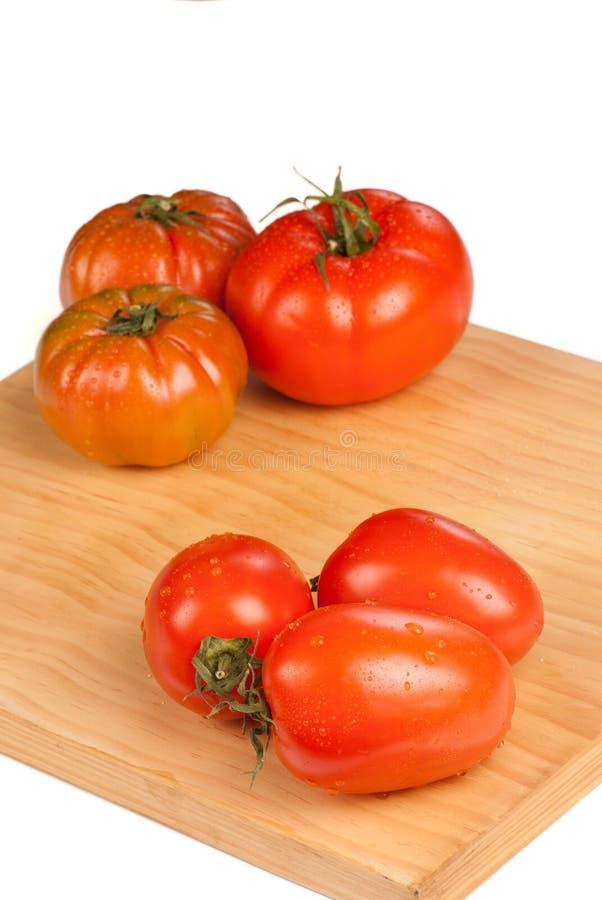 Tomaten sorterar royaltyfri bild