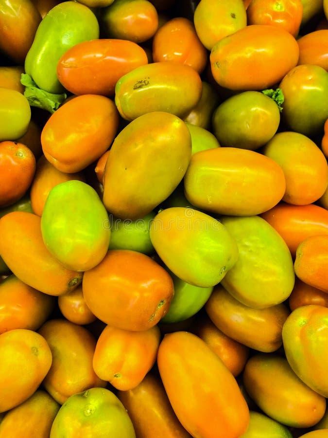 Tomaten royaltyfri bild