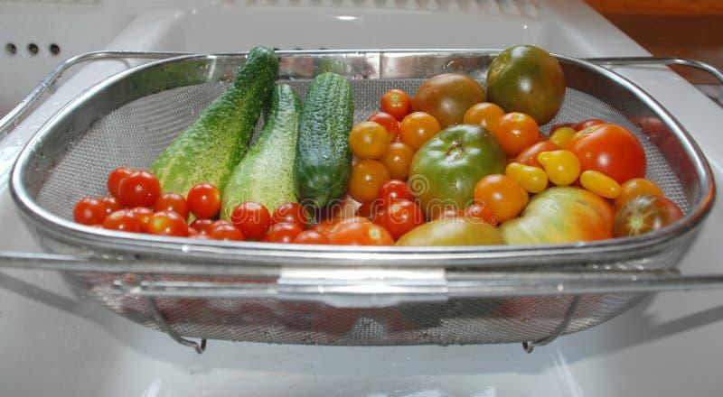 Tomaten-und Gurken-Ernte im Spülbecken lizenzfreie stockbilder