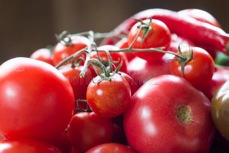 Tomaten van verschillende soorten Zachte nadruk royalty-vrije stock fotografie