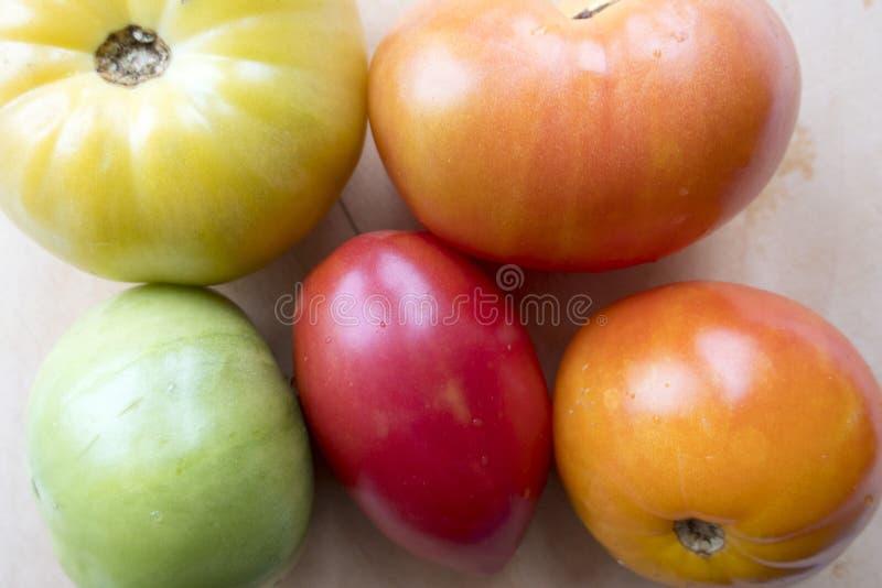 Tomaten von verschiedenen Farben stockfoto