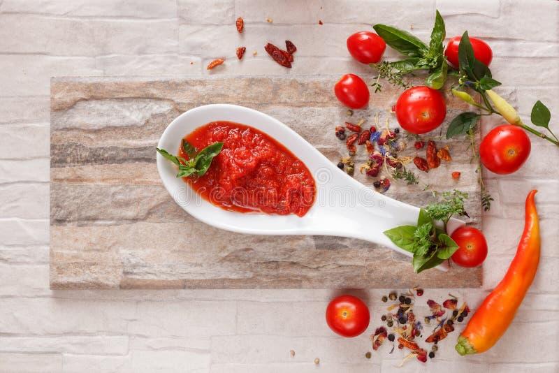 Tomatenchutney met ingrediënten stock foto