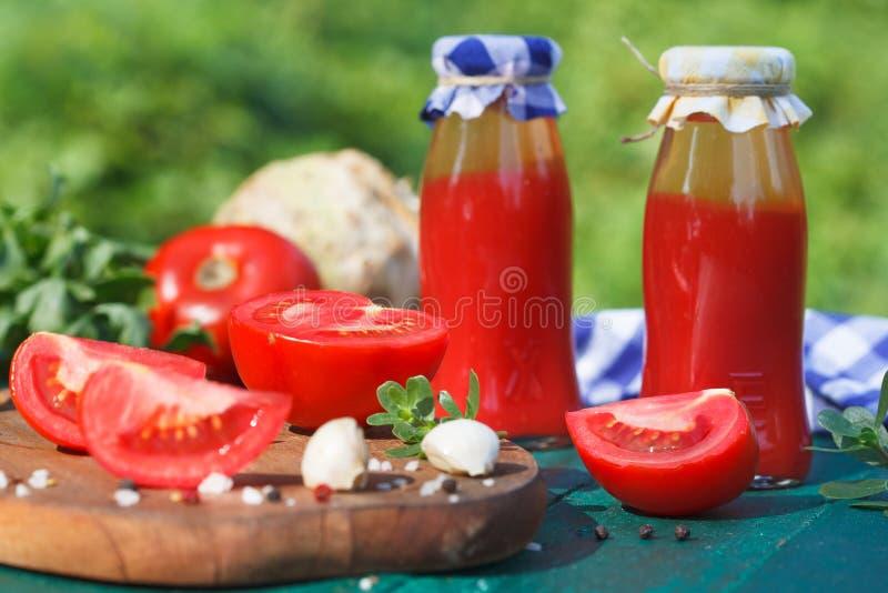 Tomatenkonzentrat, Püree in den kleinen Flaschen und frische Tomaten lizenzfreies stockfoto