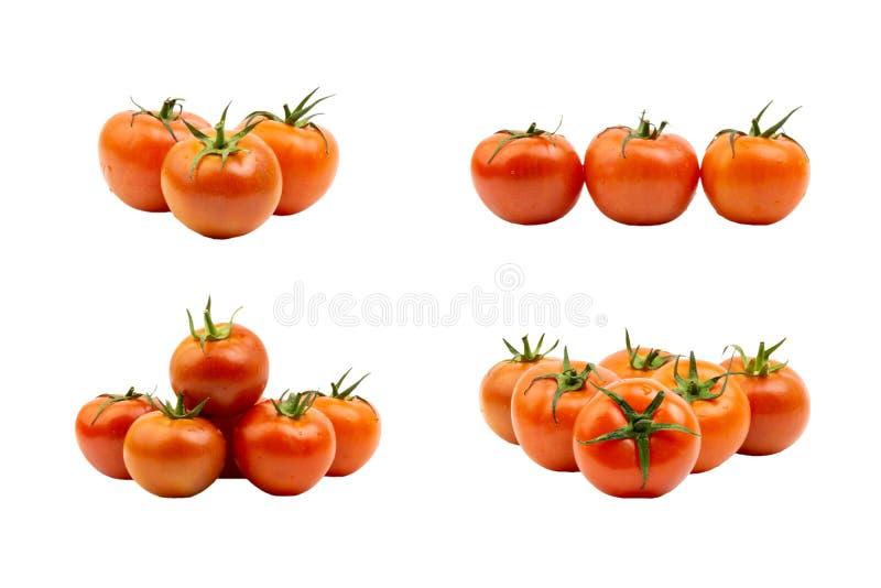 Tomatennahaufnahme auf wei?em Hintergrund stockfotos