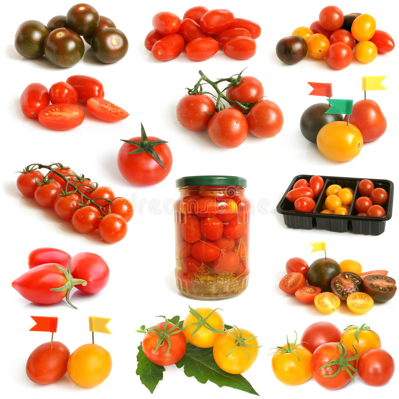 Tomatensammlung lizenzfreies stockfoto