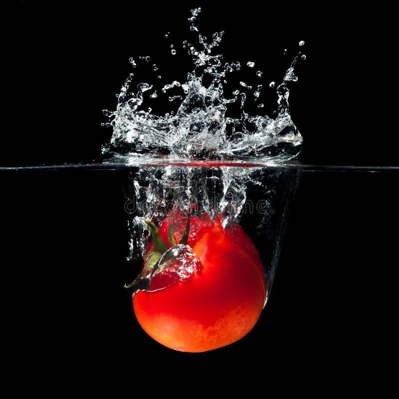 Tomatenspritzen lizenzfreie stockfotos