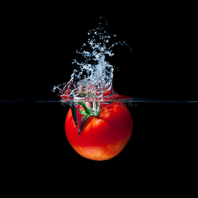 Tomatenspritzen lizenzfreies stockbild