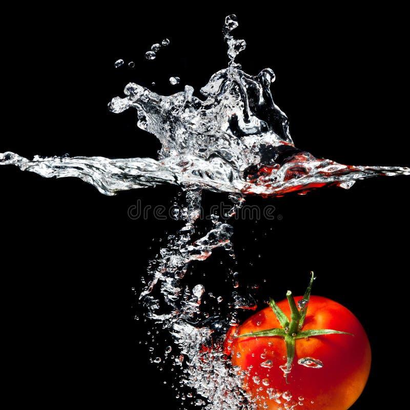 Tomatenspritzen lizenzfreies stockfoto