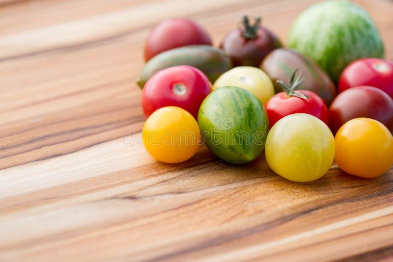 Tomatenverscheidenheden stock afbeeldingen
