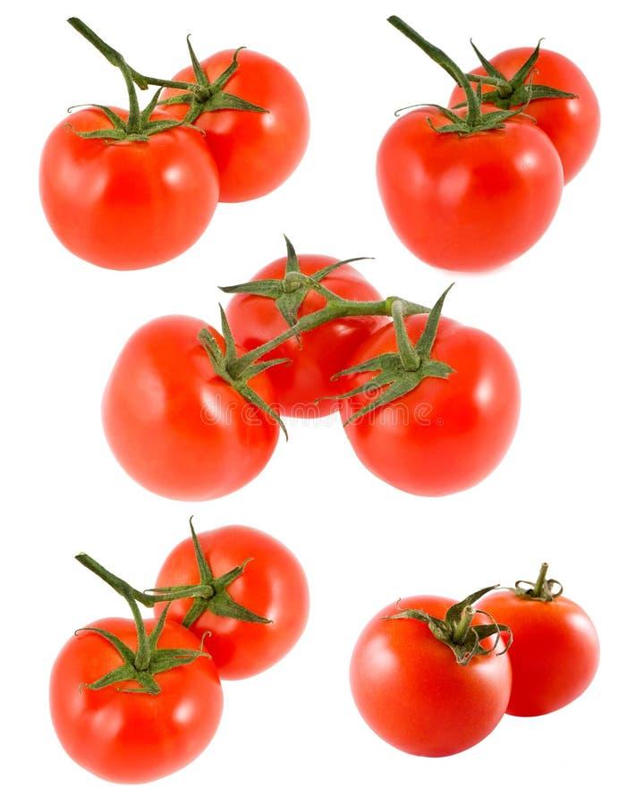 Download Tomater fotografering för bildbyråer. Bild av praktiskt - 19790941