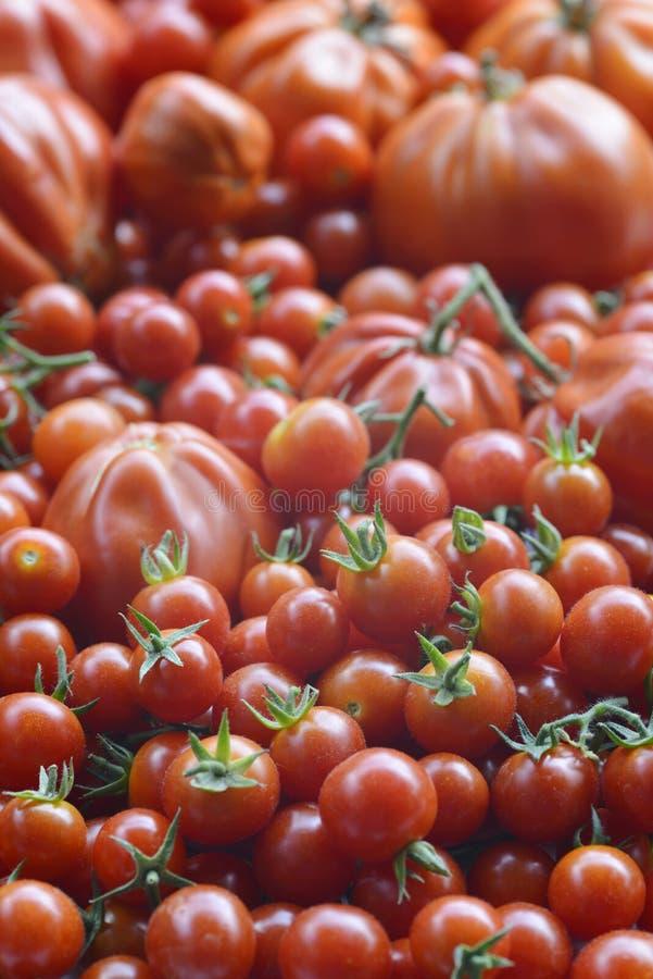 tomater för bakgrundsmatserie arkivfoto