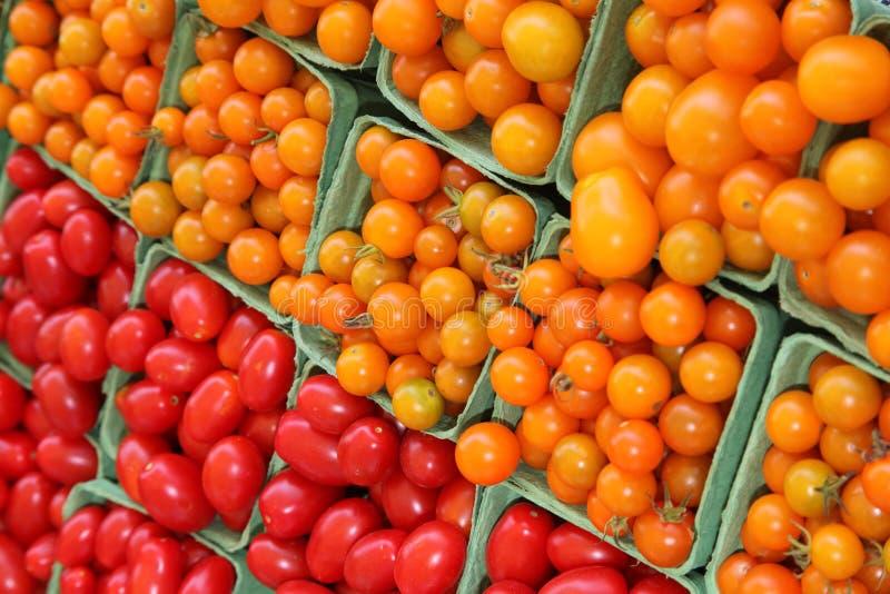 tomater för Cherrymarknadsplommon vektor illustrationer