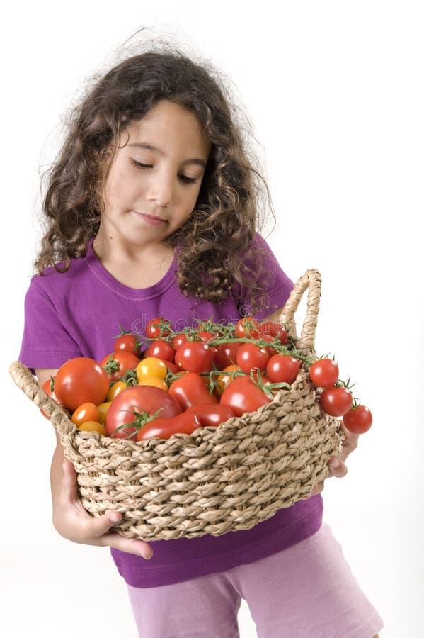 tomater för korgflickaholdin royaltyfri foto