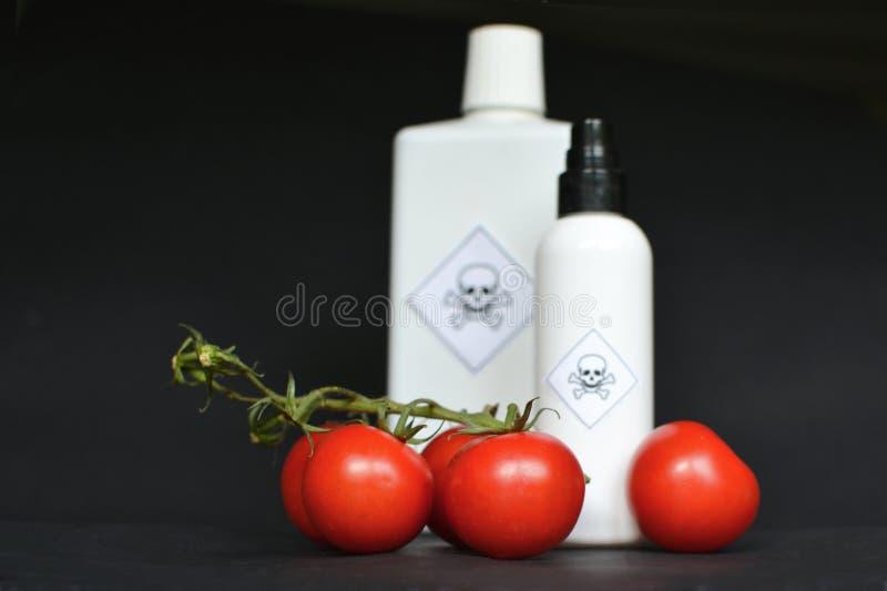 Tomater och giftflaska på svart bakgrund royaltyfri fotografi