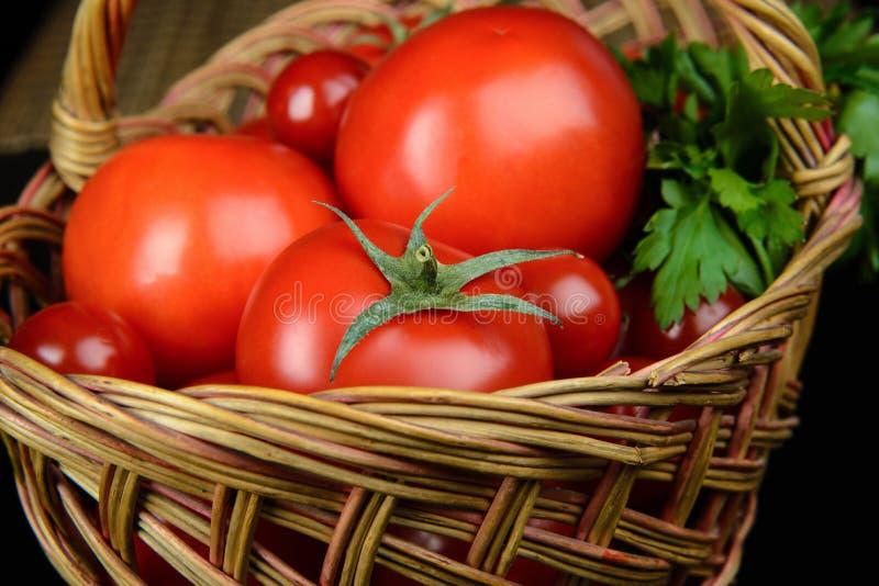 Tomater och parsley arkivbild