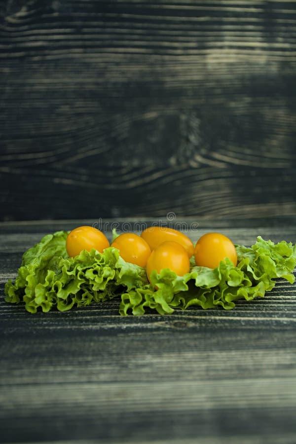 Tomater och sallad på en mörk bakgrund royaltyfria foton