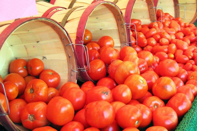 Tomater på en bondemarknad arkivbilder