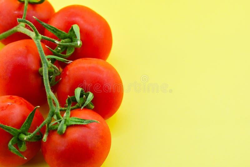 Tomater på gul bakgrund fotografering för bildbyråer