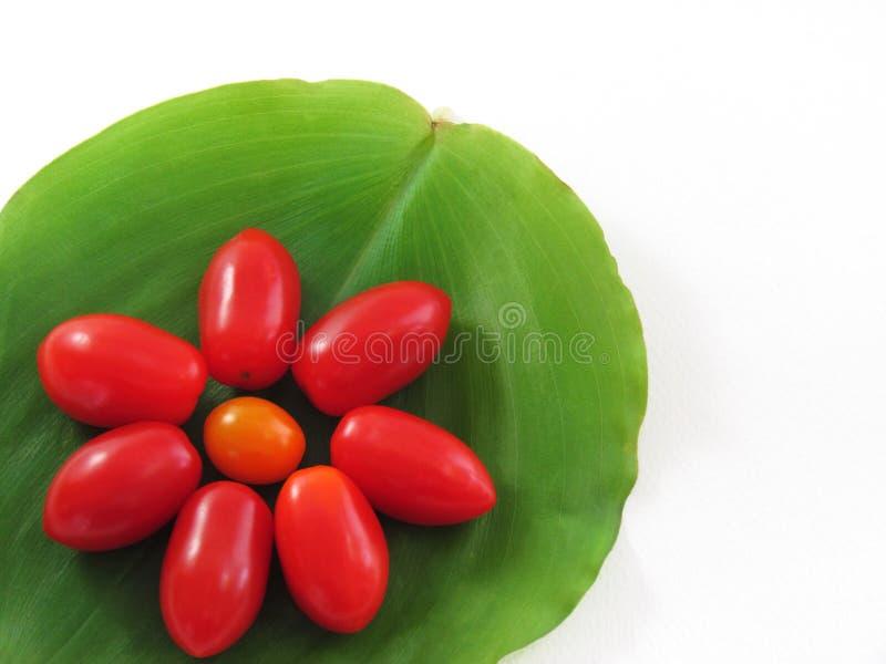 Tomater som är ordnade i form av blommor arkivfoton