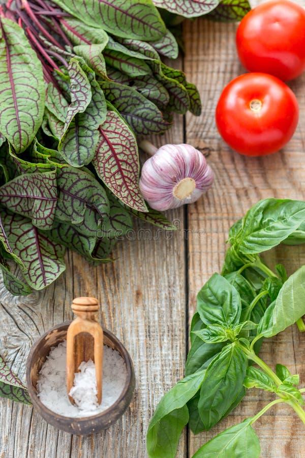 Tomater, vitlök, syra och basilika royaltyfria bilder