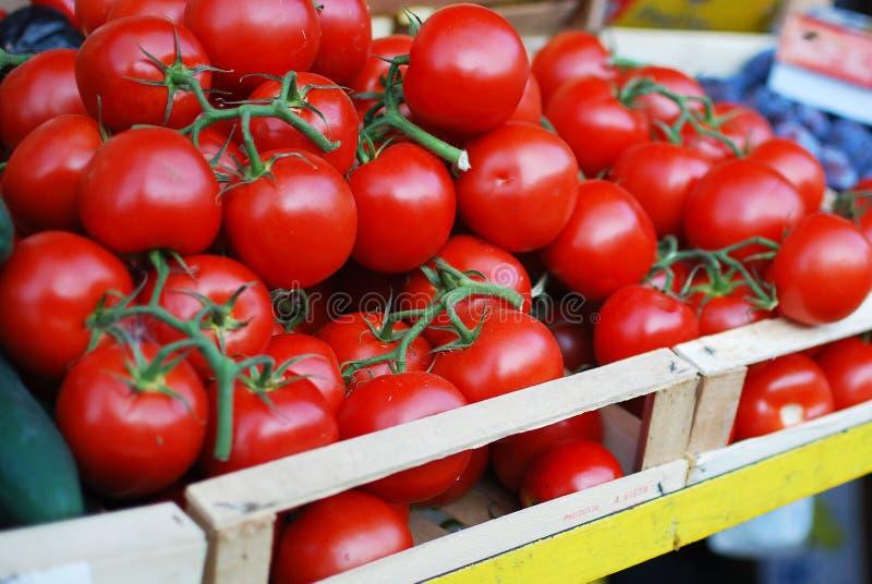Tomates à un stand du marché photo libre de droits