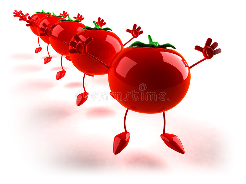 Tomates ilustração royalty free
