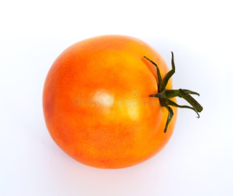 Tomates alaranjados frescos, isolados nos conceitos brancos de um fundo, nos vegetais, hortas e como um alimento natural Ilustraç fotos de stock
