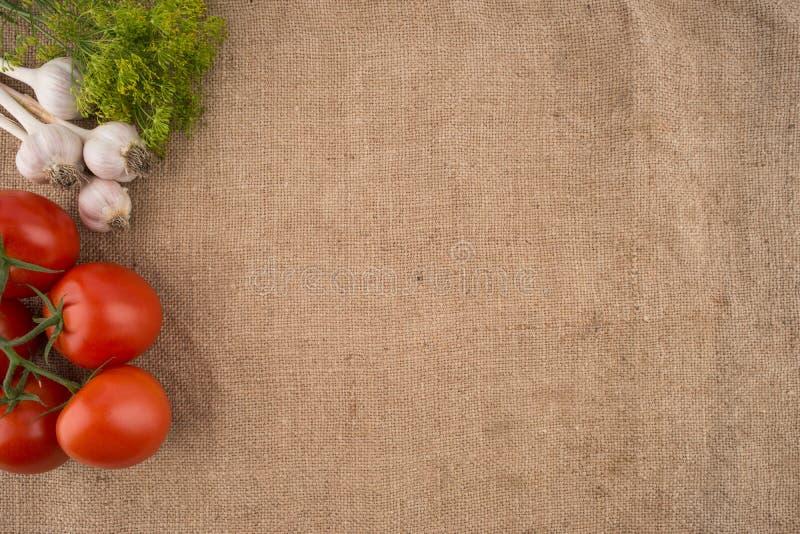 Tomates, alho e aneto no fundo do despedida velho imagens de stock