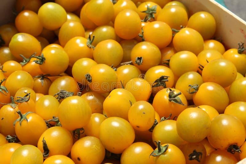Tomates amarelos impressionantes em um mercado fotos de stock royalty free