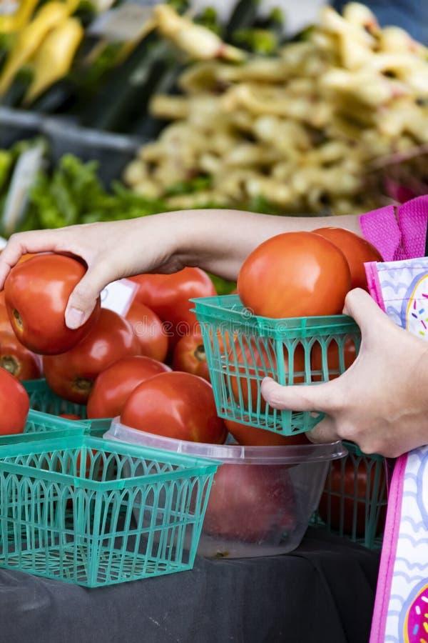 Tomates au marché d'agriculteurs des récipients avec la femme avec le sac réutilisable rose sélectionnant ceux qu'elle veut achet photo libre de droits