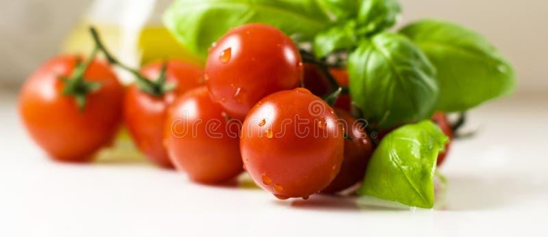 Tomates avec le basilic images libres de droits