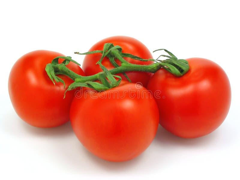 Tomates avec le chemin de découpage images libres de droits