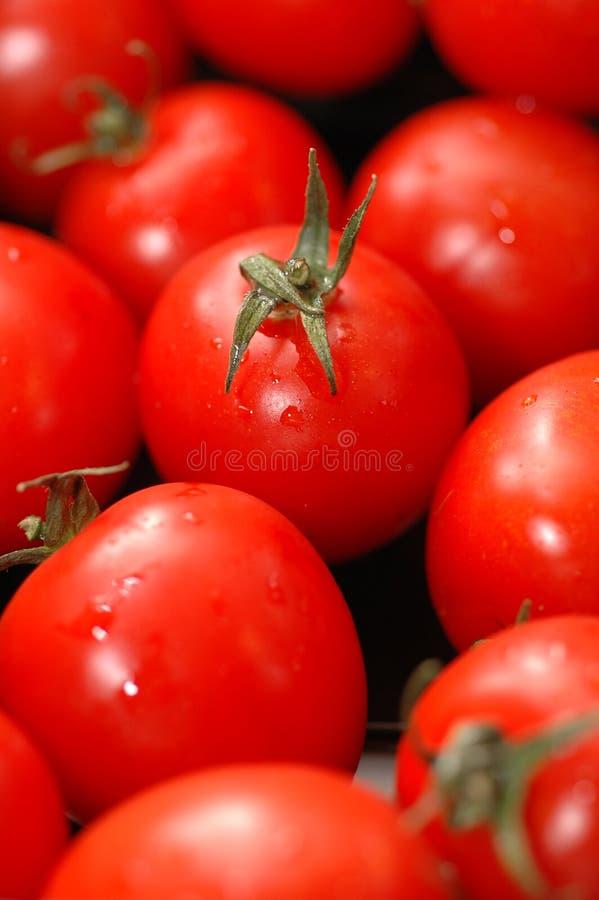Tomates-cerises 2 photographie stock