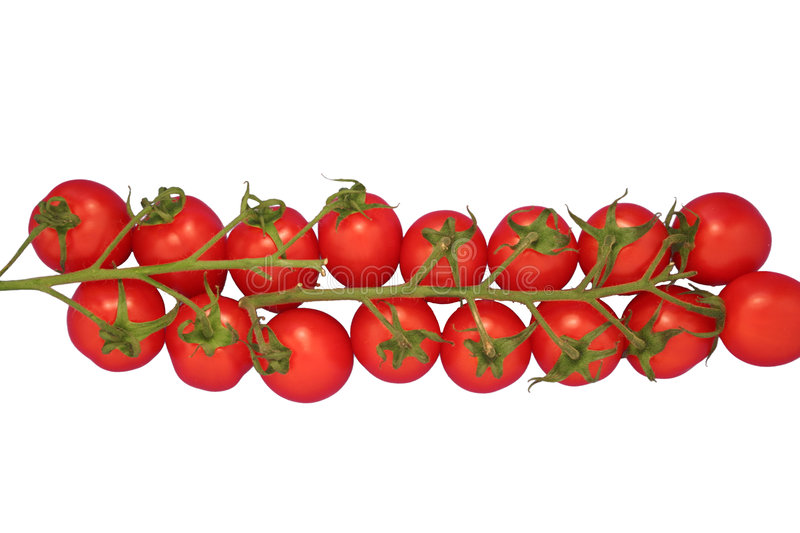 Tomates-cerises d'isolement photo stock