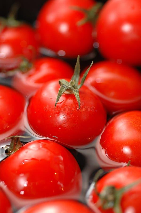Tomates-cerises dans l'eau   photo libre de droits