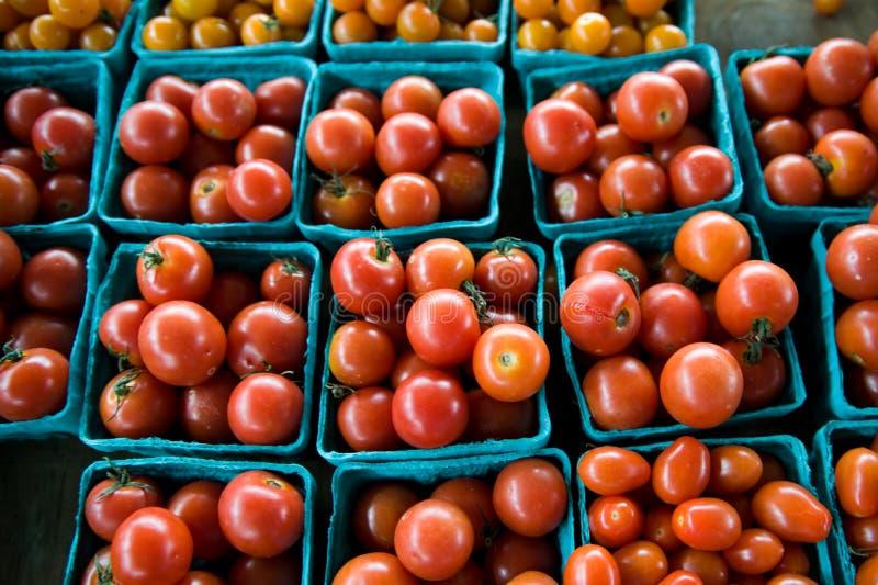 Tomates-cerises fraîches au marché du fermier images libres de droits