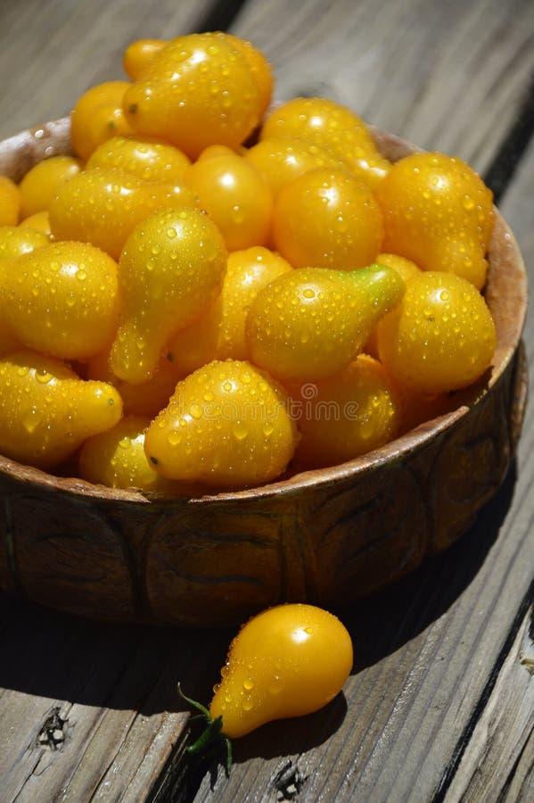 Tomates-cerises jaunes images libres de droits