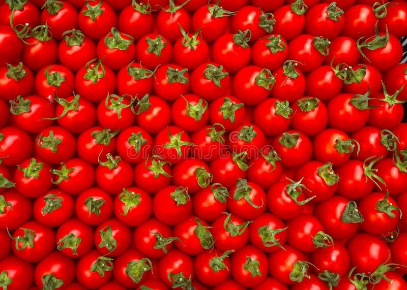 Tomates-cerises rouges Fond initial photographie stock