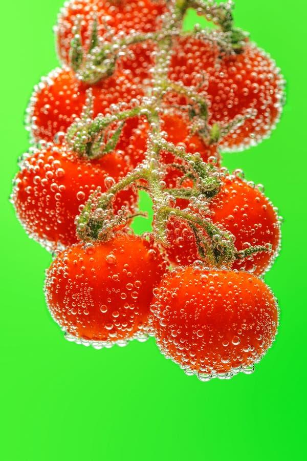 Tomates-cerises rouges mûres sur la branche submergée dans l'eau avec des bulles photo libre de droits