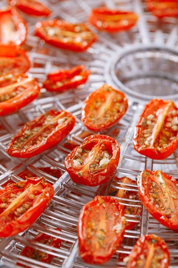 Tomates-cerises séchées au soleil sur le plateau de déshydrateur de nourriture photos stock