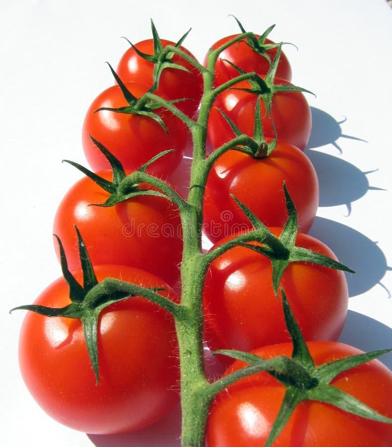 Tomates-cerises sur la vigne photographie stock