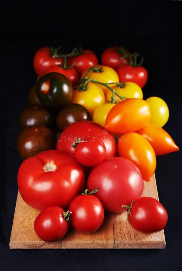 Tomates coloridos foto de stock