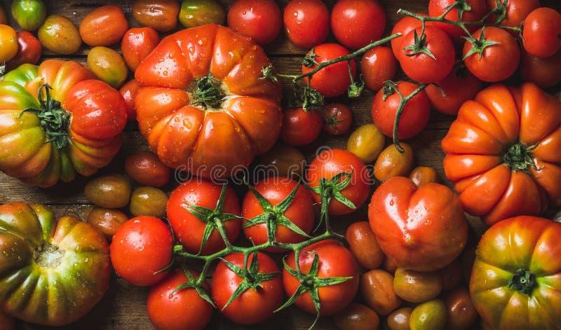 Tomates coloridos de diversos tamaños y clases imagen de archivo libre de regalías
