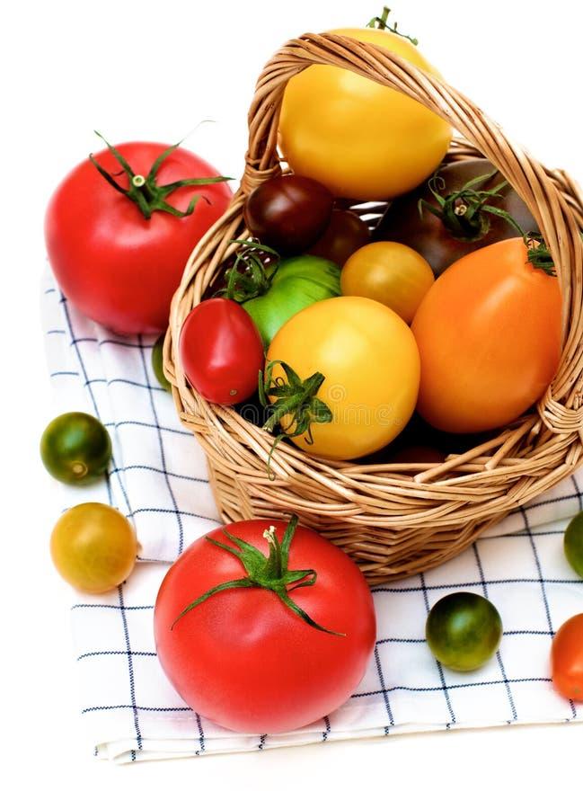 Tomates coloridos frescos imagens de stock