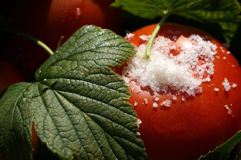 Download Tomates Con Macro De Las Hojas Y De La Sal De La Pasa Foto de archivo - Imagen de nutrición, ingredientes: 1284502