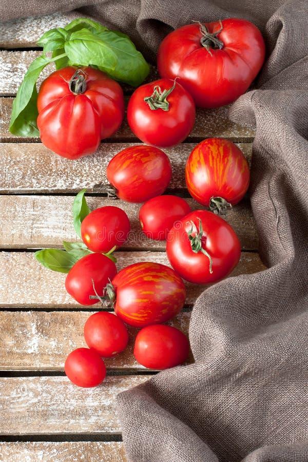 Tomates délicieuses colorées fraîches image stock